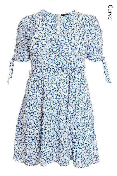 Curve Blue Floral Skater Dress